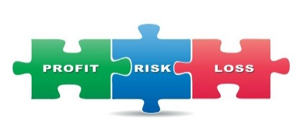Profit risk loss jigsaw