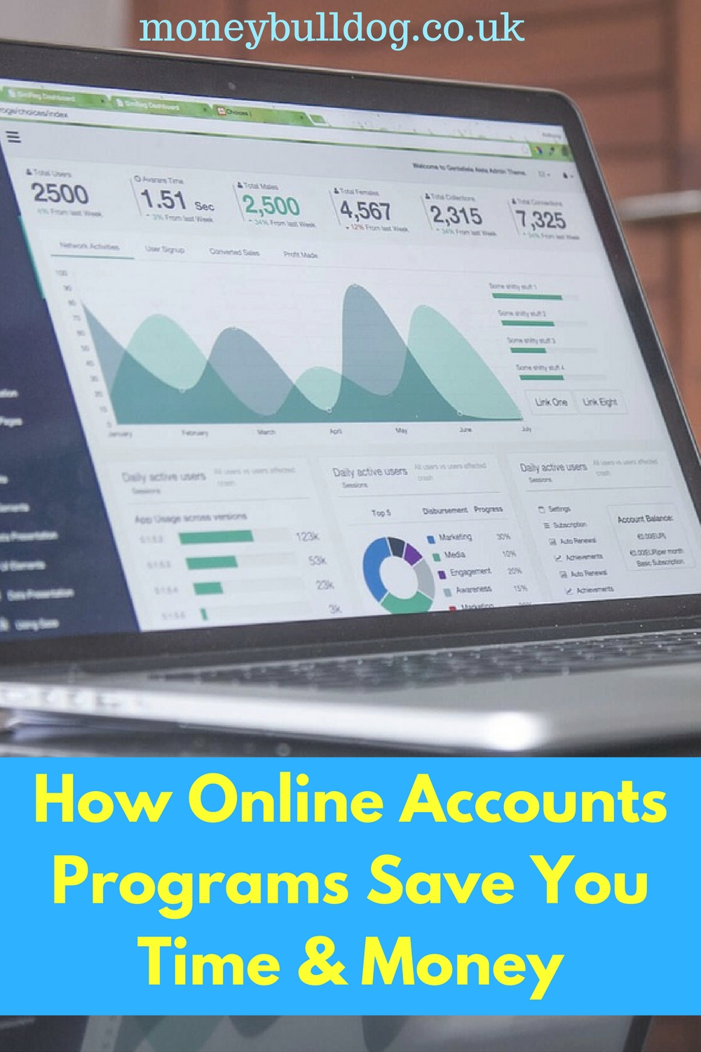How Online Accounts Programs Can Simplify Your Taxes and Save You Money