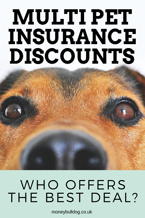 Multi Pet Insurance Discounts - Who offers the best deal?